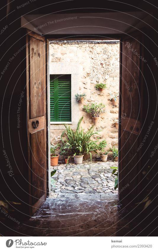 Offene Tür Lifestyle Freizeit & Hobby Häusliches Leben Wohnung Haus Blume Topfpflanze Mauer Wand Fassade Fenster Fensterladen Gasse Kopfsteinpflaster