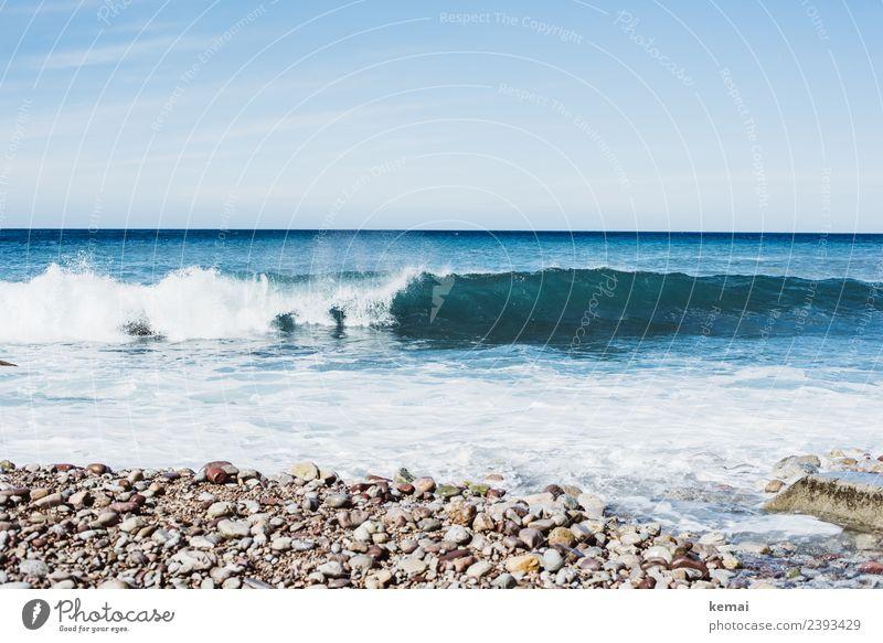 Eine der vielen Wellen Leben harmonisch Erholung ruhig Freizeit & Hobby Ferien & Urlaub & Reisen Tourismus Ausflug Abenteuer Ferne Freiheit Sommer Sommerurlaub