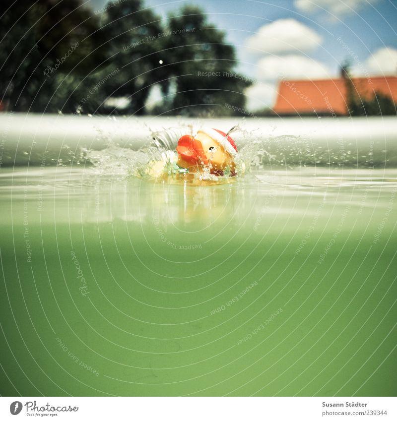SPLASH! Wasser Sommer Wolken Spielen Schwimmen & Baden Freizeit & Hobby Schwimmbad Tropfen fallen Spielzeug Wasseroberfläche Badeente Unterwasseraufnahme mehrfarbig spontan Wasserspritzer