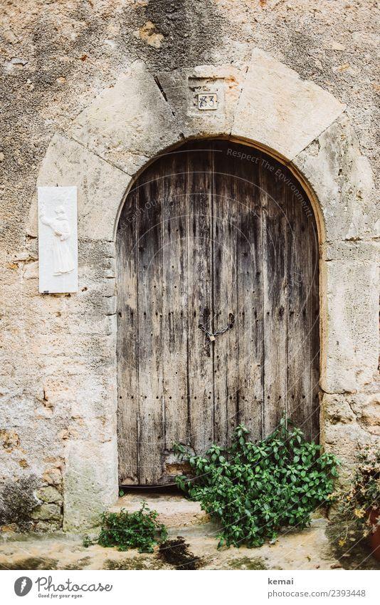 Alte Tür harmonisch ruhig Freizeit & Hobby Ferien & Urlaub & Reisen Ausflug Sightseeing Natur Sommer Sträucher Italien Kleinstadt Altstadt Mauer Wand Holztür