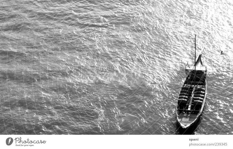 fishing Sonnenlicht Sommer Fluss ästhetisch glänzend ruhig Stil Stimmung Wasserfahrzeug Frachter Wellengang Reflexion & Spiegelung Schwarzweißfoto Außenaufnahme