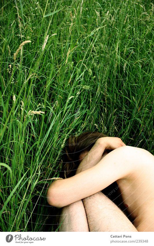 HIDE and SEEK maskulin Junger Mann Jugendliche Erwachsene Natur Gras Wiese Feld brünett festhalten hocken liegen machen nackt natürlich dünn Einsamkeit