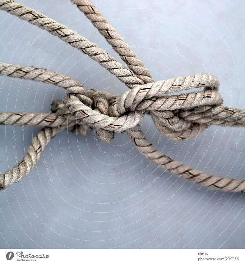 Verschlungene Pfade grau Ordnung ästhetisch Seil Knoten maritim Schlaufe Vor hellem Hintergrund