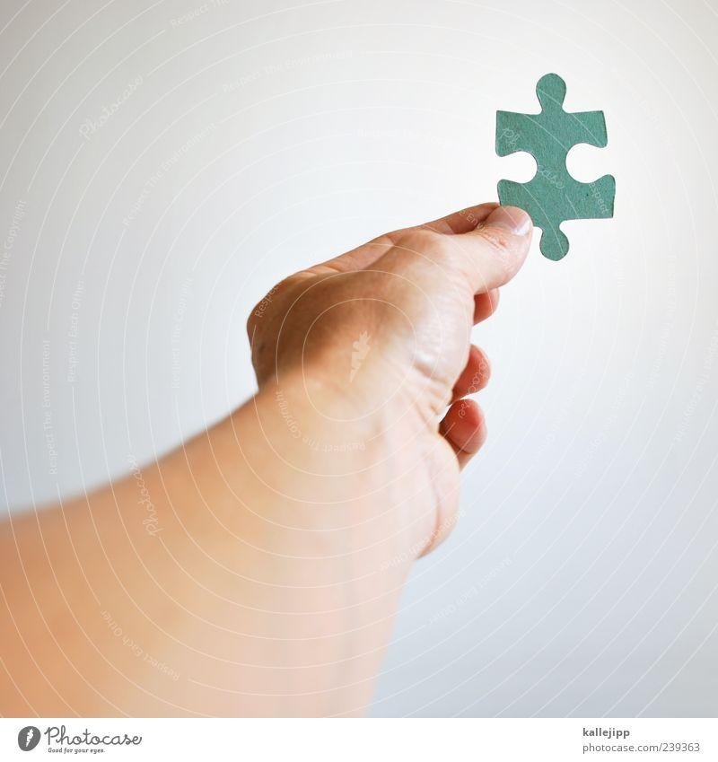 fundbüro Bildung Mensch maskulin Mann Erwachsene Leben Arme Hand 1 festhalten Puzzle Verstand System Teile u. Stücke Erfolg Beratung planen Suche finden