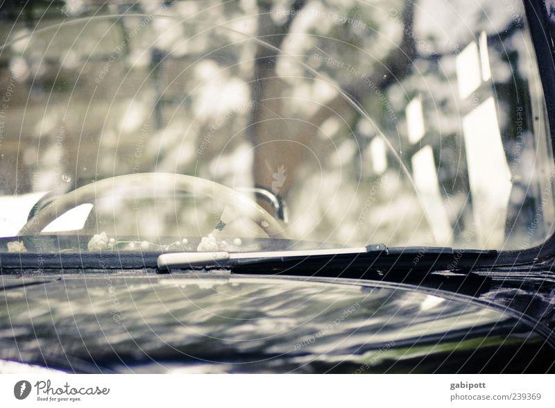 das weiße Lenkrad Autofenster elegant Wandel & Veränderung retro Vergänglichkeit Vergangenheit Verfall Mobilität Fahrzeug Bus exotisch Nostalgie Fernweh