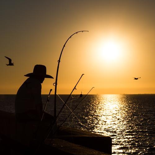 relaxen Mensch Himmel Ferien & Urlaub & Reisen Mann Sommer Sonne Meer Erholung ruhig Erwachsene Wärme gelb Freizeit & Hobby Zufriedenheit Horizont gold