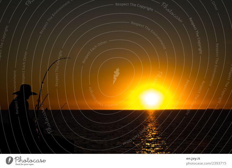 Abendessen Mensch Himmel Ferien & Urlaub & Reisen Mann Sommer Landschaft Meer ruhig Ferne Erwachsene gelb orange Freizeit & Hobby Horizont gold USA