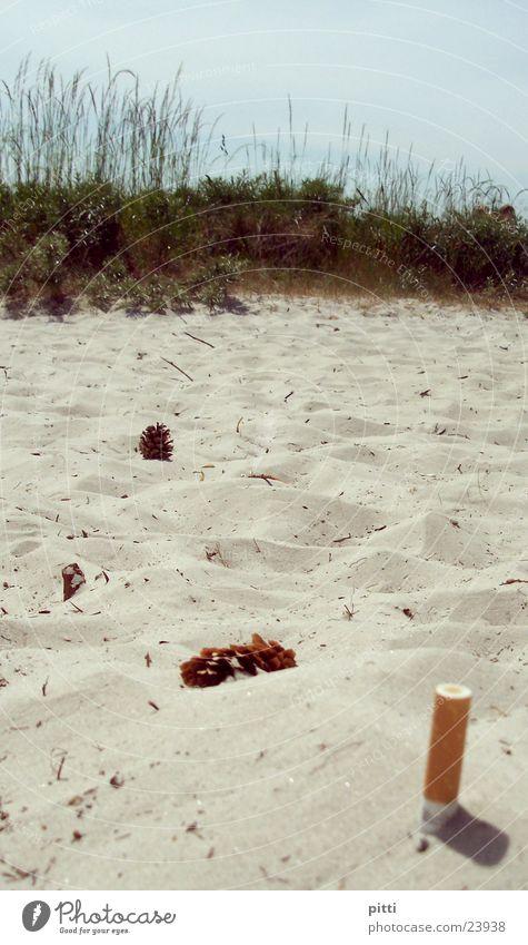 strandsand 1 Strand Sträucher Schilfrohr Zigarette grün Sand Zigarettenstummel
