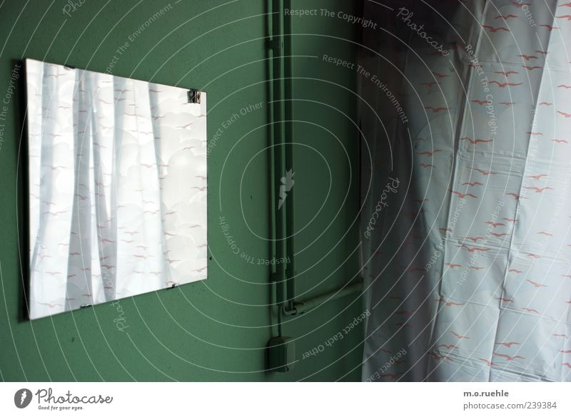 die vögel quillen in den raum weiß grün kalt Raum Kabel Bad Schutz Spiegel ausdruckslos Vorhang Dusche (Installation) Spiegelbild Elektrisches Gerät