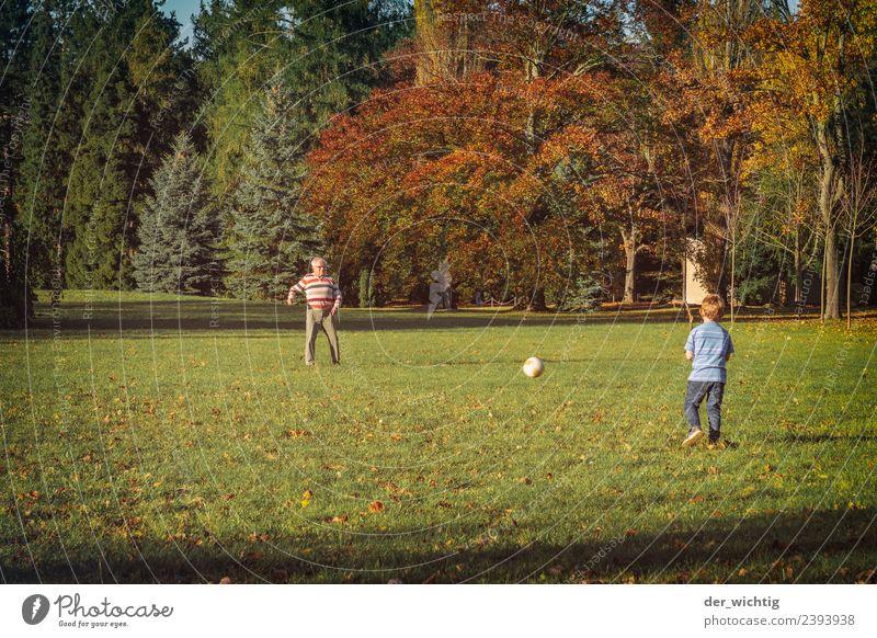 Opa & Enkel spielen Fußball Sport Mensch maskulin Kind Mann Erwachsene Großvater 2 3-8 Jahre Kindheit 60 und älter Senior Sonne Sommer Schönes Wetter Park Wiese