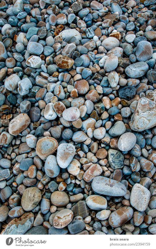 Kieselsteine Hintergrund Design schön Ferien & Urlaub & Reisen Sommer Strand Meer Dekoration & Verzierung Tapete Wissenschaften Umwelt Natur Landschaft Felsen