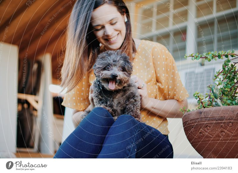 Frau mit ihrem Haushund Lifestyle Mensch Erwachsene Mutter 1 18-30 Jahre Jugendliche Tier Haustier Hund Gefühle Stimmung Freude Fröhlichkeit Sicherheit Schutz