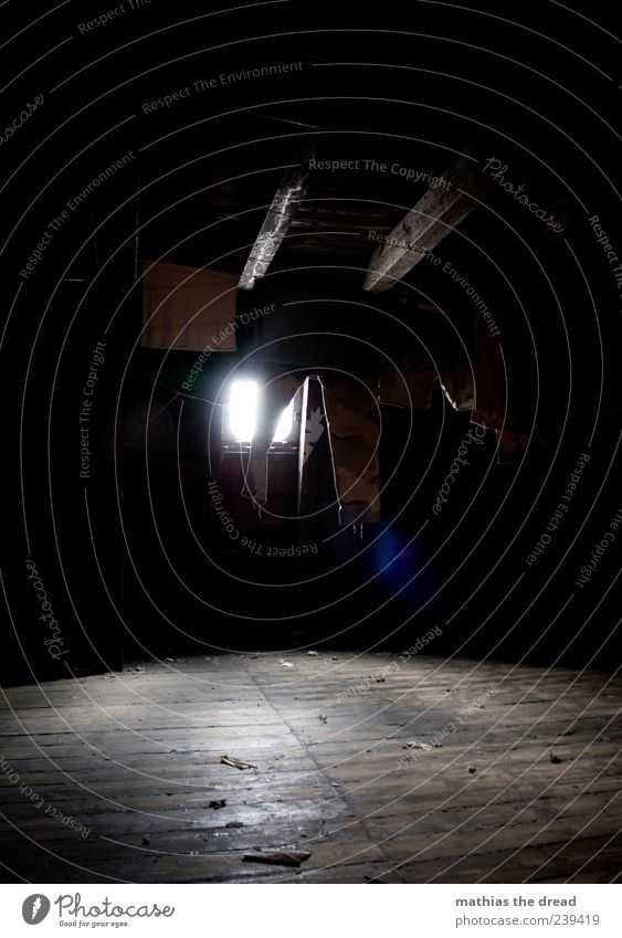 EINFACH HÄNGEN LASSEN Menschenleer Haus Dach Bekleidung T-Shirt Hose hängen dunkel Wäscheleine Wäsche waschen trocknen Dachboden Lichtschein Dachgebälk staubig