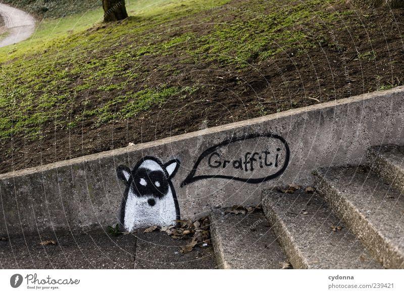 Graffiti Natur ruhig Umwelt Wiese Graffiti Leben Wand Gras Wege & Pfade Mauer Stil Kunst Park Freizeit & Hobby Treppe Design