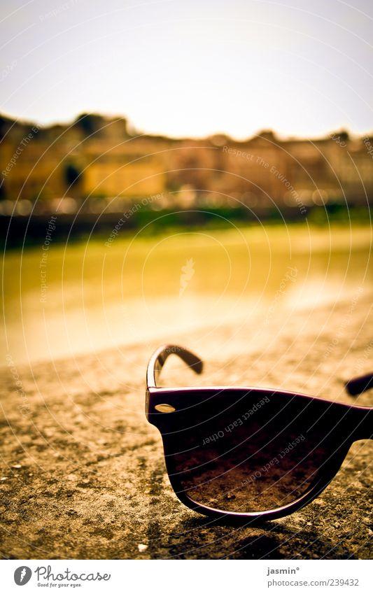 wichtiges Accessoir! Umwelt Landschaft Sommer Fluss Stadtzentrum Sehenswürdigkeit Freude Coolness Farbfoto Außenaufnahme Schatten Sonnenlicht Sonnenbrille
