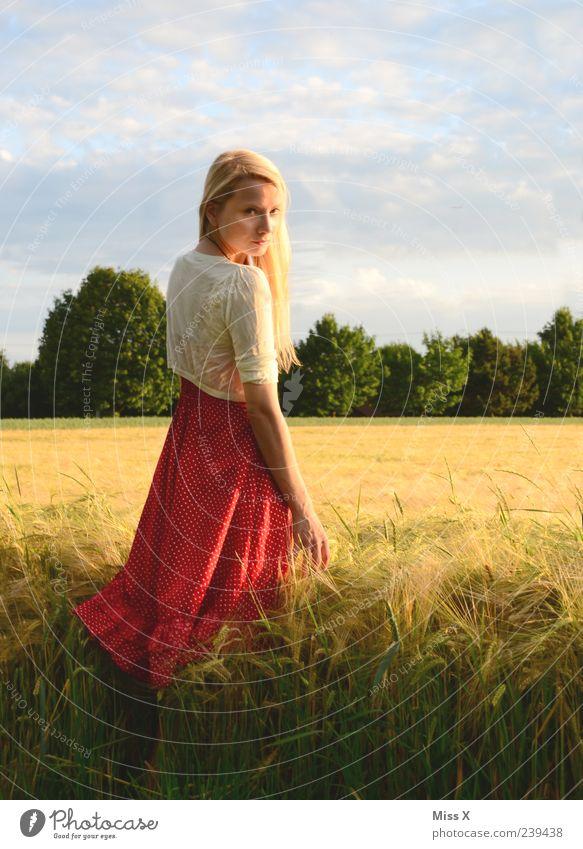 im Sonnenlicht II Mensch Himmel Natur Jugendliche schön Pflanze Sommer ruhig Erwachsene Erholung Landschaft Wiese feminin Gras Junge Frau blond