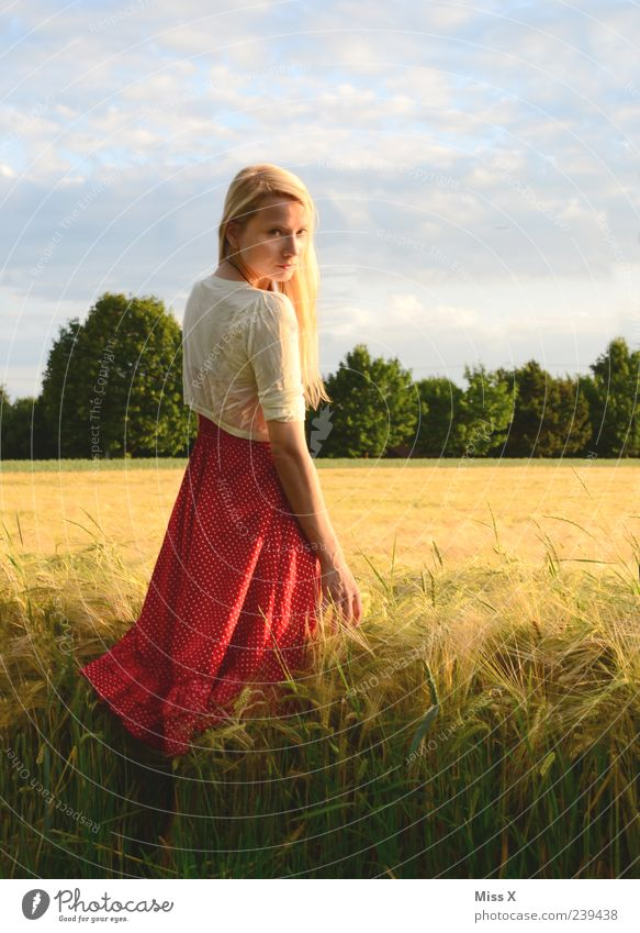 im Sonnenlicht II schön Erholung ruhig Mensch feminin Junge Frau Jugendliche 1 18-30 Jahre Erwachsene Natur Landschaft Himmel Sonnenaufgang Sonnenuntergang