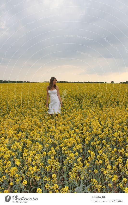 Raps Mensch Frau Himmel Natur Pflanze Sommer Blume Freude Wolken ruhig Erwachsene gelb Landschaft feminin Luft Erde
