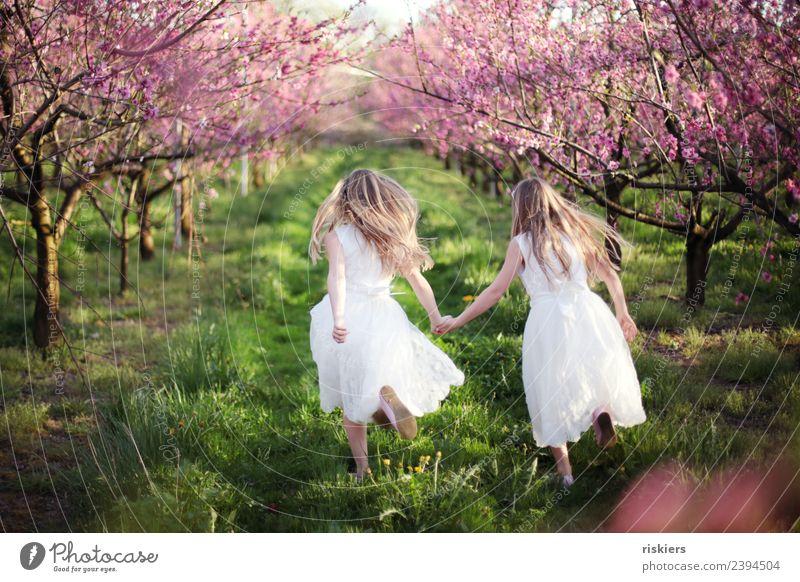 zweisam Mensch feminin Kind Mädchen Geschwister Schwester Kindheit 2 8-13 Jahre Umwelt Natur Landschaft Frühling Sommer Schönes Wetter Garten Wiese Feld