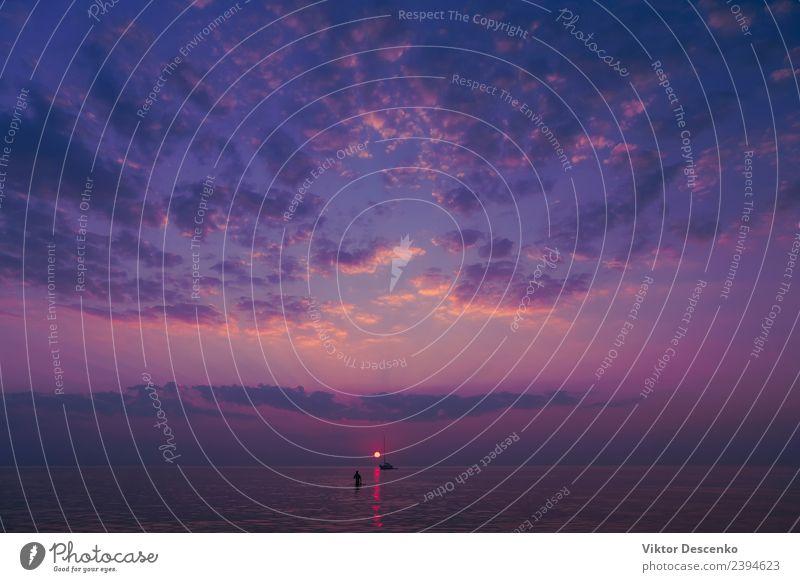 Violetter Sonnenuntergang in der Ostsee schön Erholung ruhig Ferien & Urlaub & Reisen Sommer Strand Meer Natur Landschaft Himmel Wolken Horizont Küste See Vogel