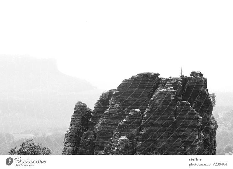 zerklüftet Umwelt Landschaft Berge u. Gebirge Felsen Reisefotografie Sächsische Schweiz Stein Elbsandsteingebirge