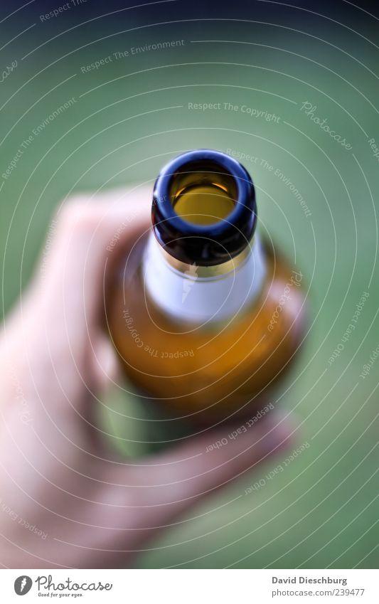 Don't drink & drive Hand grün Ernährung Lebensmittel braun Getränk trinken Bier Flüssigkeit Erfrischung Flasche Alkoholisiert Sucht Bierflasche