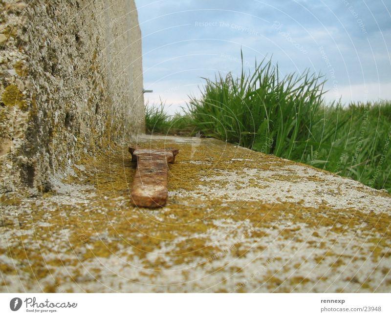 Insektenperspektive 1 Schraubenschlüssel Werkzeug Schlüssel Wand kaputt Moos Wetter Wiese grün saftig Gras Pflanze authentisch Wolken schlechtes Wetter Sommer