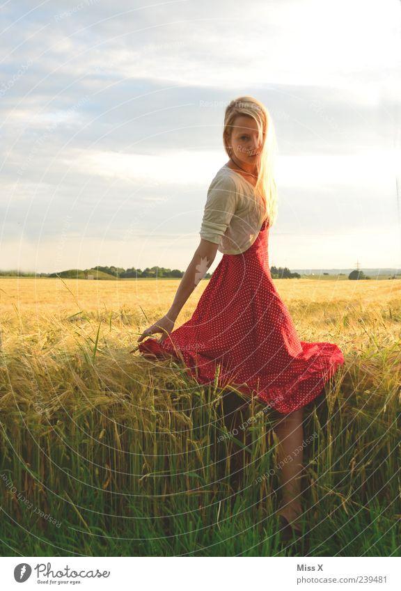 rotes Lieblingskleid schön ruhig Mensch feminin Junge Frau Jugendliche 1 18-30 Jahre Erwachsene Sonnenlicht Sommer Gras Feld Mode Kleid blond Natur Kornfeld