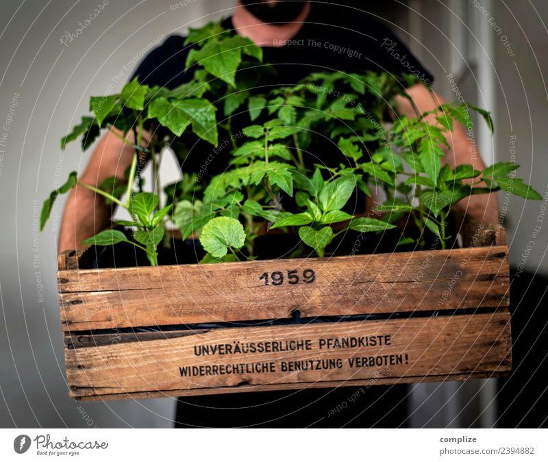 Urban Gardening Pflanze Gesunde Ernährung Stadt Gesundheit Frucht Wachstum Gemüse stoppen Balkon Bioprodukte altehrwürdig nachhaltig Terrasse