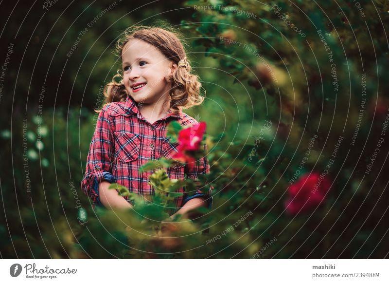 Kind Mädchen geht im Sommer spazieren Freude schön Spielen Ferien & Urlaub & Reisen Garten Kindheit Natur Wärme Blume Gras Wald Lächeln Fröhlichkeit klein