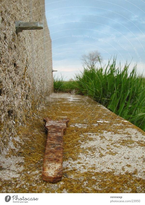 Insektenperspektive 2 Schraubenschlüssel Werkzeug Schlüssel Wand kaputt Moos Wetter Wiese grün saftig Gras Pflanze authentisch Wolken schlechtes Wetter Sommer