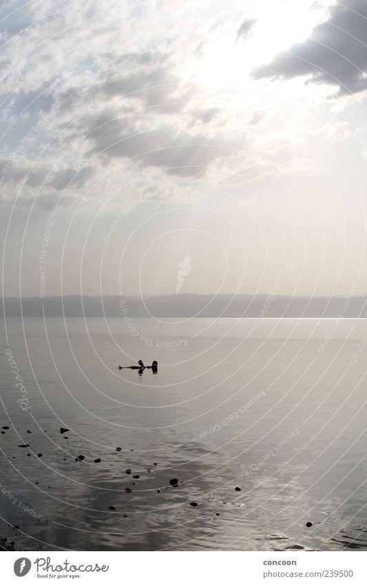 Dead Sea Floating Mensch Ferien & Urlaub & Reisen Sommer Meer Einsamkeit ruhig Erholung Ferne Stimmung Schwimmen & Baden Zufriedenheit liegen außergewöhnlich
