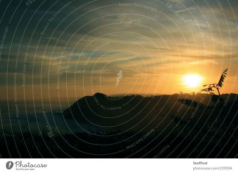 Bonjour Natur Landschaft Pflanze Wasser Himmel Wolken Horizont Sonne Sonnenaufgang Sonnenuntergang Sonnenlicht Sommer Wetter Schönes Wetter Wärme Sträucher
