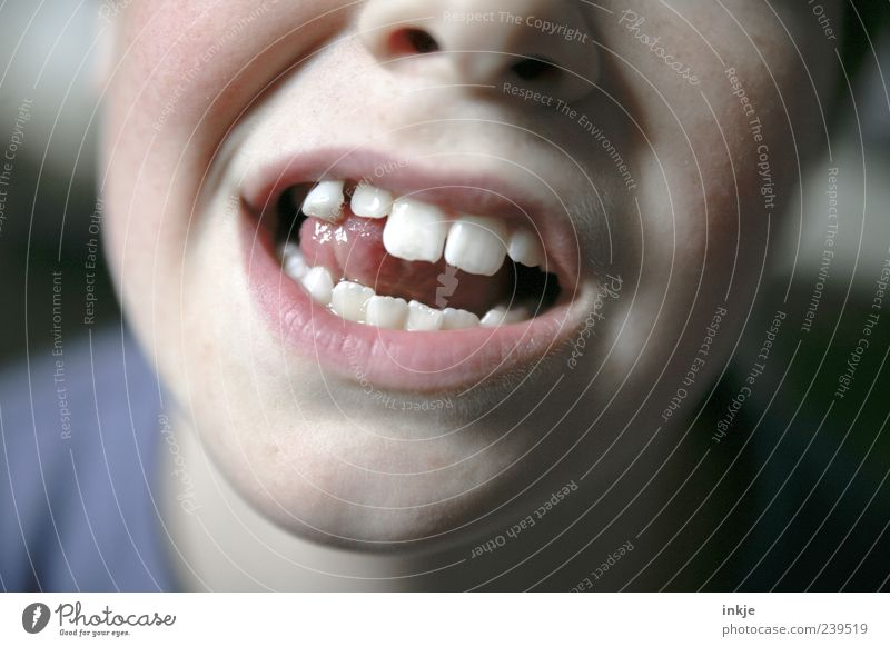 gewagter Tastsinn Kind Jugendliche Leben Gefühle Bewegung Stimmung Kindheit Mund natürlich Wachstum Wandel & Veränderung Zähne berühren machen hängen 8-13 Jahre