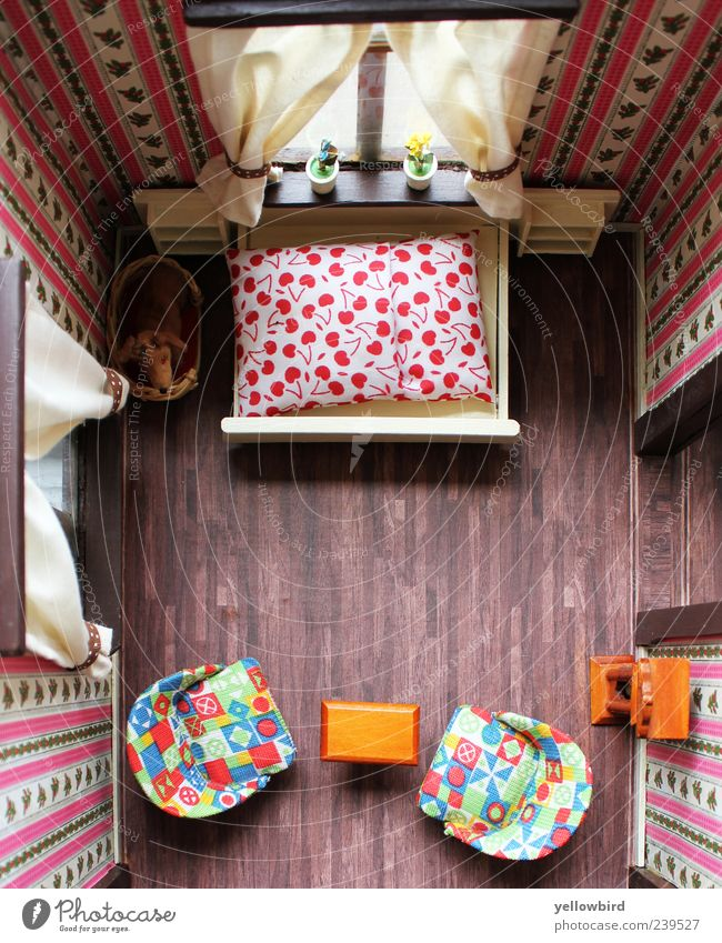 Miniwelt Hund rot Tier Fenster Innenarchitektur braun Raum Wohnung rosa außergewöhnlich Uhr Design modern Tisch Häusliches Leben Dekoration & Verzierung