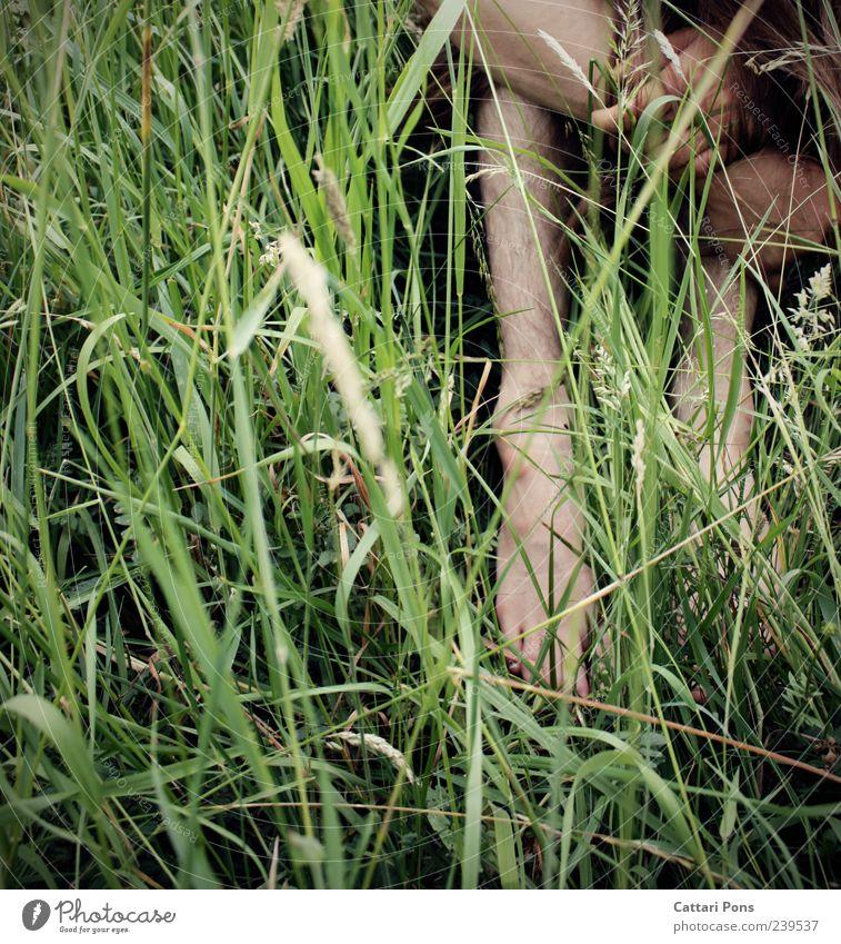 meadow and... maskulin Mann Erwachsene 1 Mensch Sommer Gras Wiese hocken sitzen natürlich dünn Einsamkeit schuldig Scham verstecken grün Farbfoto Außenaufnahme