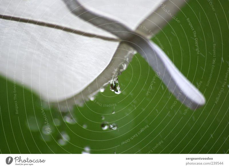 Rainy Night In Soho Wasser weiß grün Sommer Umwelt kalt Frühling träumen Regen Wetter Wind Klima nass Wassertropfen Tropfen Schutz
