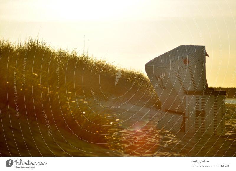 Abends Natur weiß Ferien & Urlaub & Reisen schön Sommer Meer Strand Erholung Umwelt Landschaft Gras Küste Stimmung außergewöhnlich Tourismus leuchten