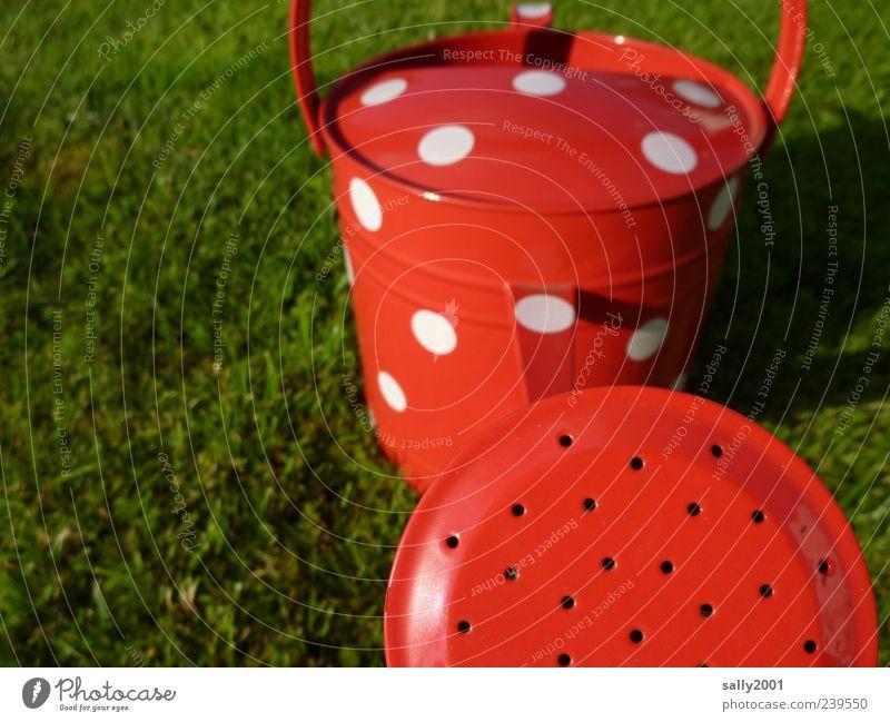 Es ist wieder Sommer... weiß rot Wiese Metall außergewöhnlich Fröhlichkeit ästhetisch Punkt Gartenarbeit gießen gepunktet Gärtner Frühlingsgefühle Gießkanne