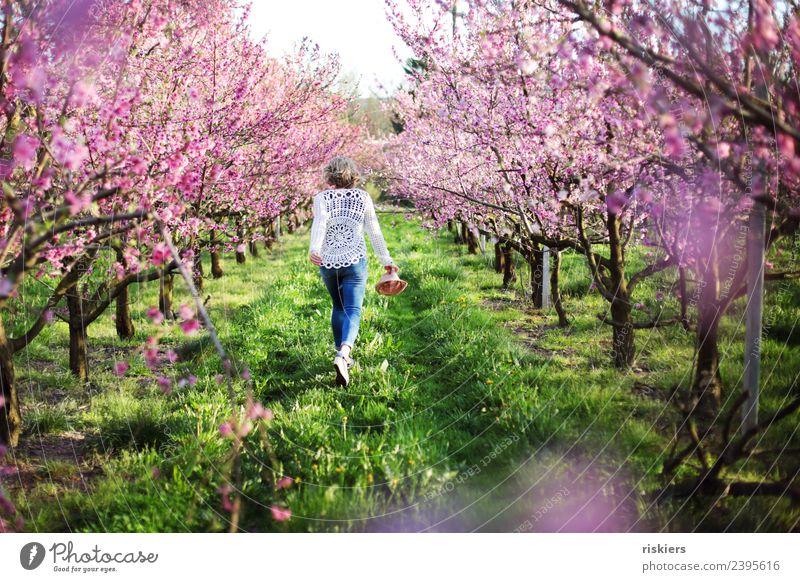 Frühlingserwachen Frau Mensch Natur Jugendliche Junge Frau Pflanze Landschaft Erholung ruhig 18-30 Jahre Erwachsene Leben Umwelt feminin Glück