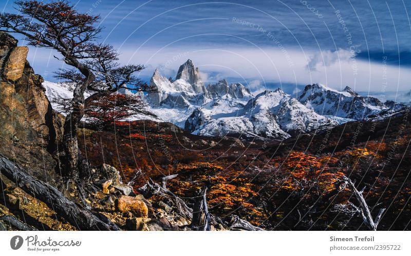 Fitz Roy View wandern Abenteuer Ferne Freiheit Berge u. Gebirge Landschaft Himmel Wolken Wald Gipfel Schneebedeckte Gipfel gigantisch kalt braun Kraft Mut