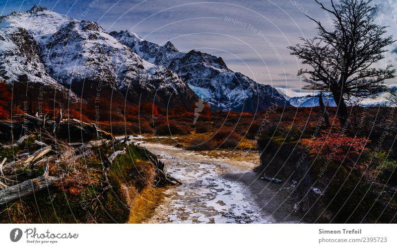 Weg im Fitz-Roy Nationalpark Tourismus Abenteuer Ferne Freiheit Expedition Berge u. Gebirge wandern Herbst Winter Klima Schönes Wetter Eis Frost Anden