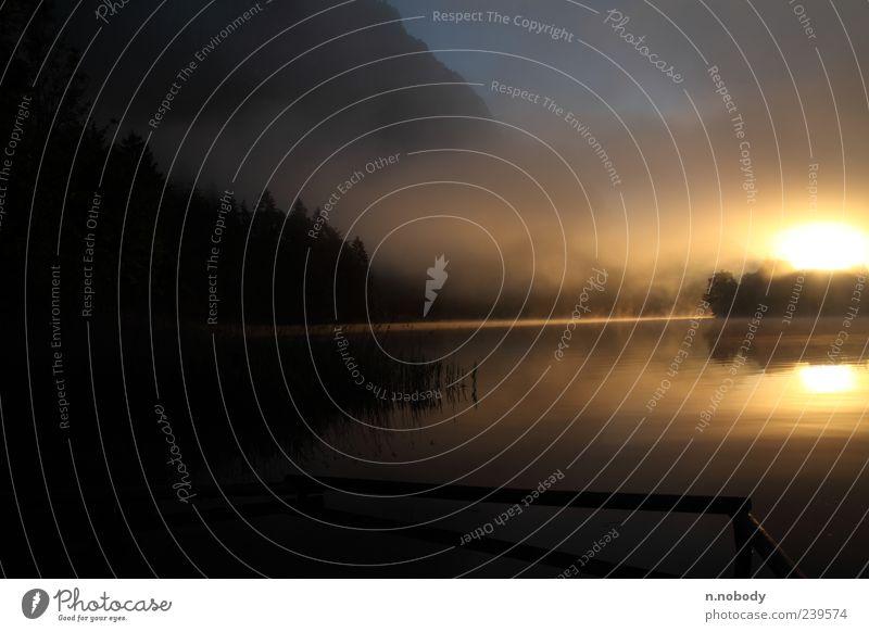 Traumhafter Sonnenaufgang Natur Wasser Sonne Landschaft Gefühle See Stimmung Schönes Wetter Idylle Aussicht Geländer Seeufer Dunst Sonnenuntergang Wasserspiegelung Morgennebel