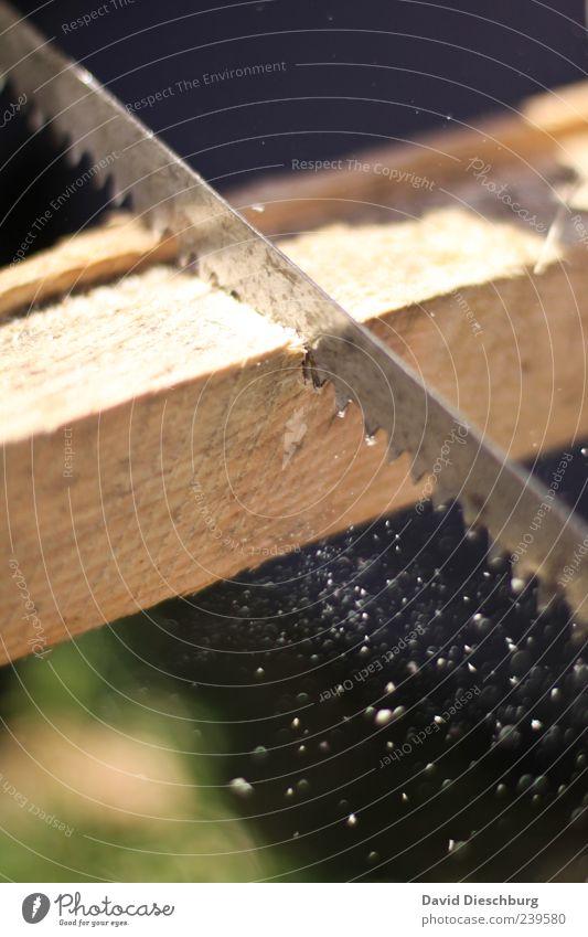 Holzmichel@work Bewegung Holz Metall Arbeit & Erwerbstätigkeit Kraft Handwerk Werkzeug Handwerker Bildausschnitt Anschnitt Tatkraft Balken Säge Beruf Späne Sägemehl