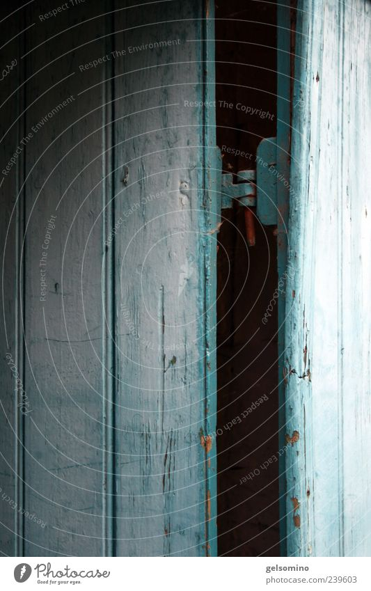 spinksen blau alt dunkel Holz Tür fest antik rustikal Scharnier Holztür