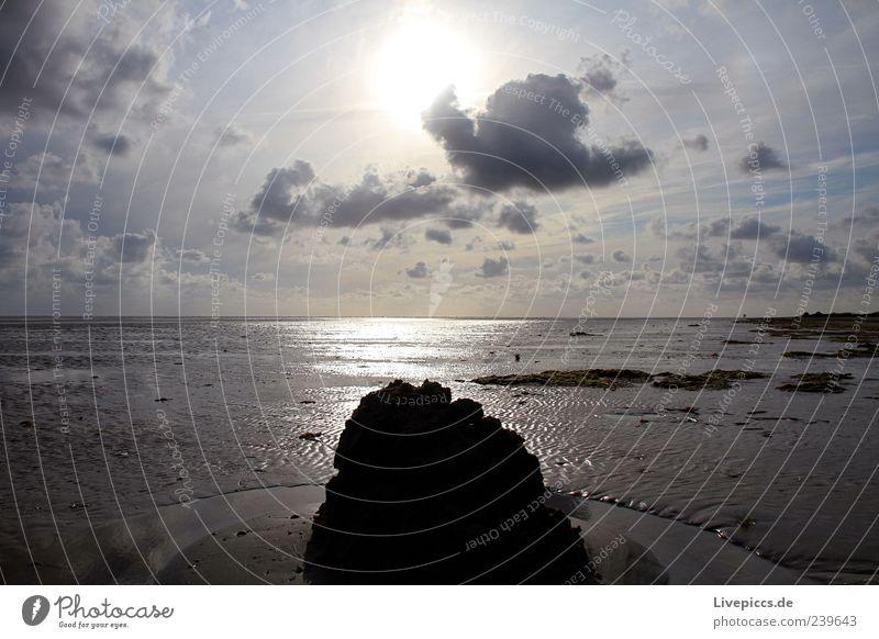 Wattlandschaft Natur blau weiß Sonne Sommer Meer Strand schwarz Ferne gelb Landschaft Freiheit Küste Horizont braun Wellen