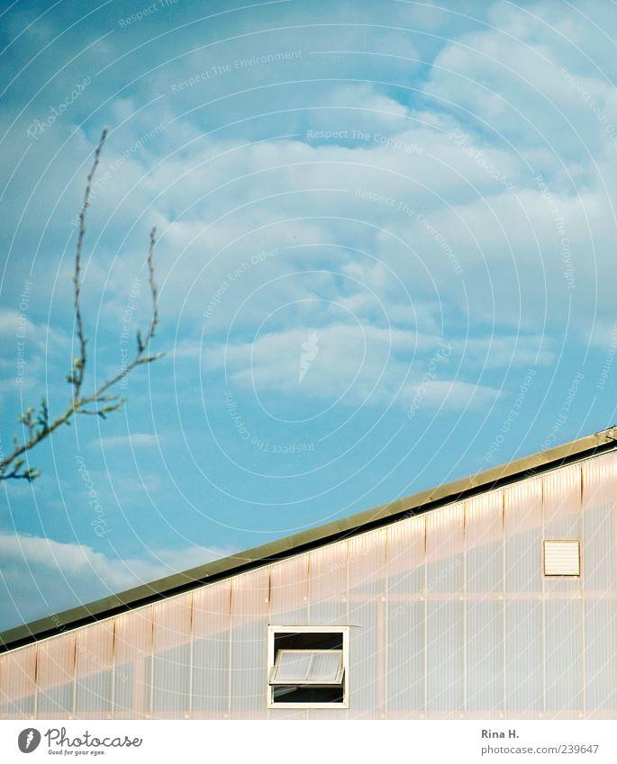 Schönes Wetter Himmel blau Wolken Haus Fenster Gebäude hell Dach Schönes Wetter Surrealismus Blauer Himmel Zweige u. Äste