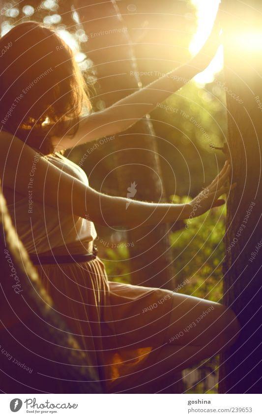 Baumspiel Ausflug Abenteuer Ferne Freiheit Sommer feminin Junge Frau Jugendliche 1 Mensch 18-30 Jahre Erwachsene Park Wald brünett atmen beobachten berühren