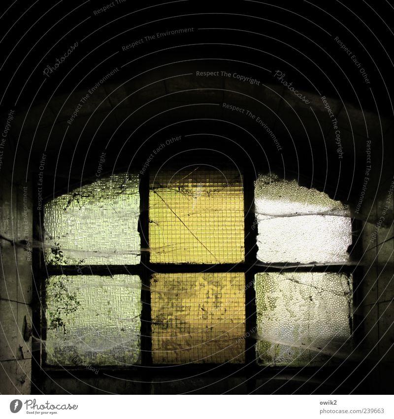 Ganz unten Keller Kellerfenster alt dunkel historisch trashig trist Spinngewebe Staub Staubfäden verfallen Verfall Zahn der Zeit Glas schmuddelig staubig