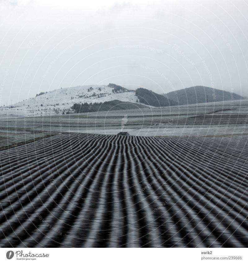 Karpatenvorland Himmel Natur blau Ferien & Urlaub & Reisen Winter schwarz Wald Ferne Umwelt Landschaft Schnee Berge u. Gebirge Freiheit grau hell Horizont